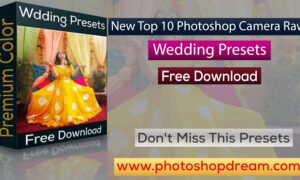 New Top 10 Photoshop Camera Raw Presets Wedding Free Download