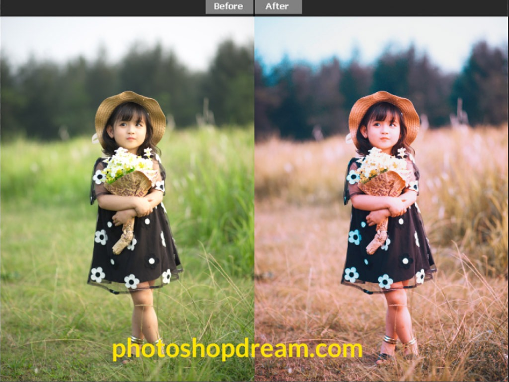Top 10 Cinematic Color Photoshop Action Free Download