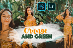 ORANGE and GREEN Preset for Photoshop Lightroom